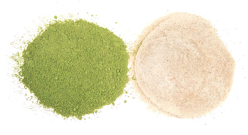 moringa-powder-comparison.jpg