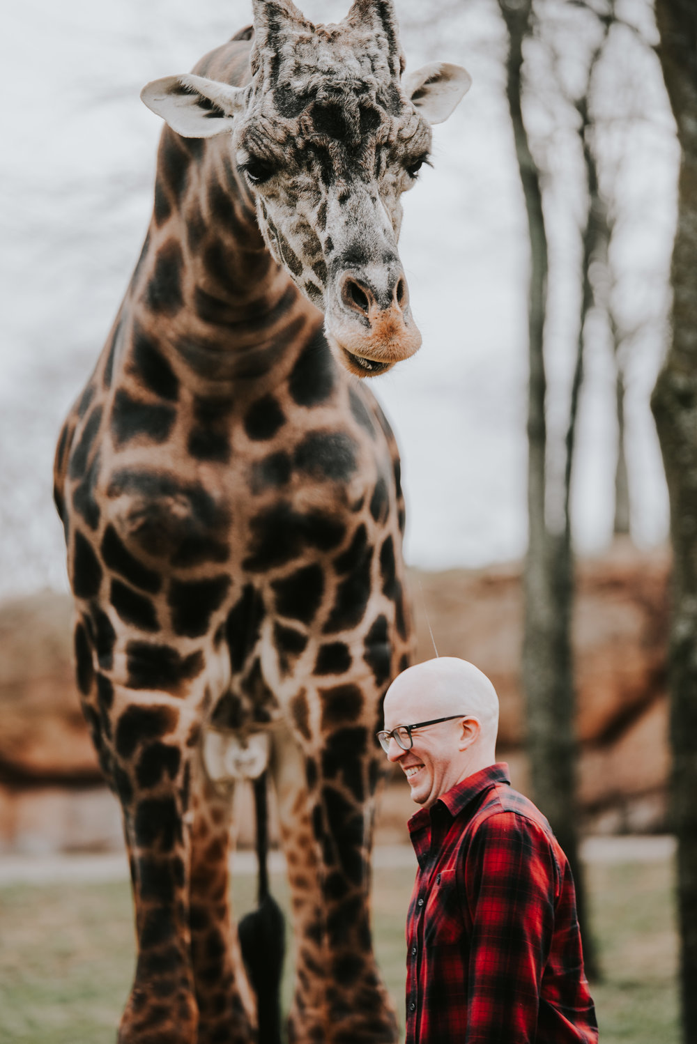 emily and daniel nashville zoo engagement session wilde company-3154.jpg