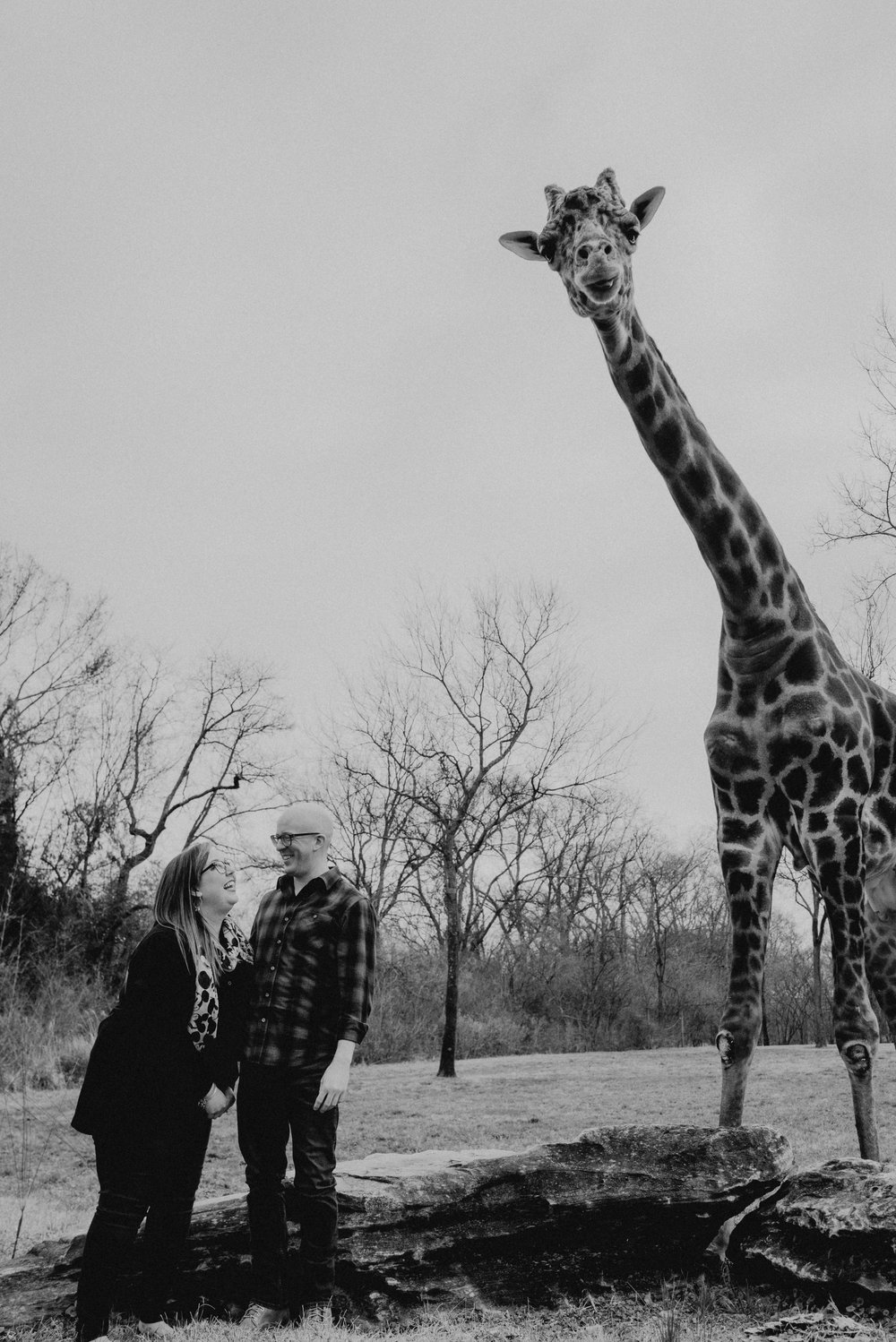 emily and daniel nashville zoo engagement session wilde company-7777.jpg