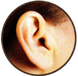 Invisible-In-The-Canal (IIC) Completely invisible For mild to moderately severe hearing loss Custom-made for you