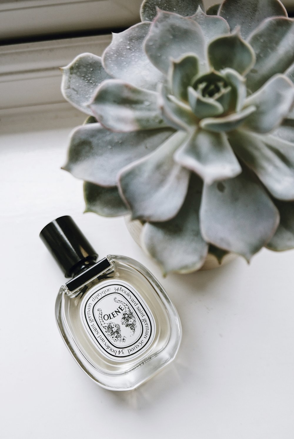 DIPTYQUE 'OLENE' - NOTES - JASMIN, WISTERIA, HONEYSUCKLE    I'm a sucker for anything with jasmin flower in it and this is one of my favourite scents with the flower. Jasmin to me reminds me so much of Thailand and the memories I have with the flower is what draws me to the scent. Thats actually what draws me to a scent - that it could take you back to a memory and respark your emotions. This Diptyque scent is an ode to the flower, making it very distinctive and I always get compliments every time I wear it. Diptyque Oleane available to by here
