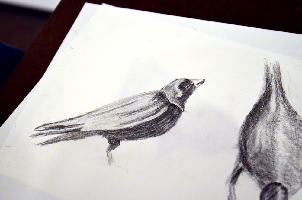 "Rosie McGraw drawing of birds in Julie Buffalohead's ""Straight Legs"" painting"