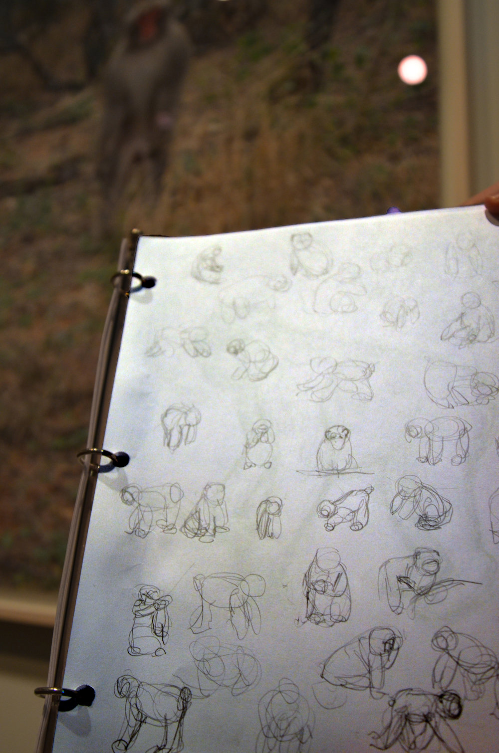 "William Wise's gesture drawings of Shimabuku's video ""Do snow monkeys remember snow mountains?"""