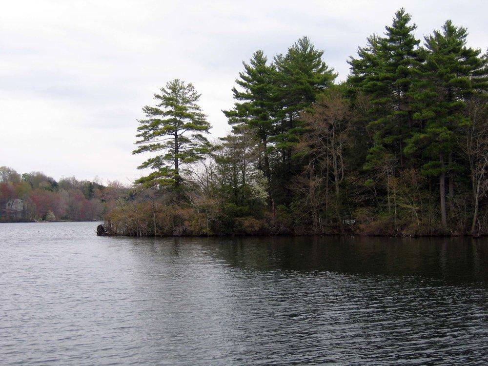 Pondside pond 2005.jpg