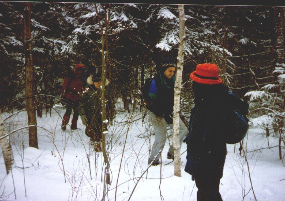prindle_snow_a.jpg