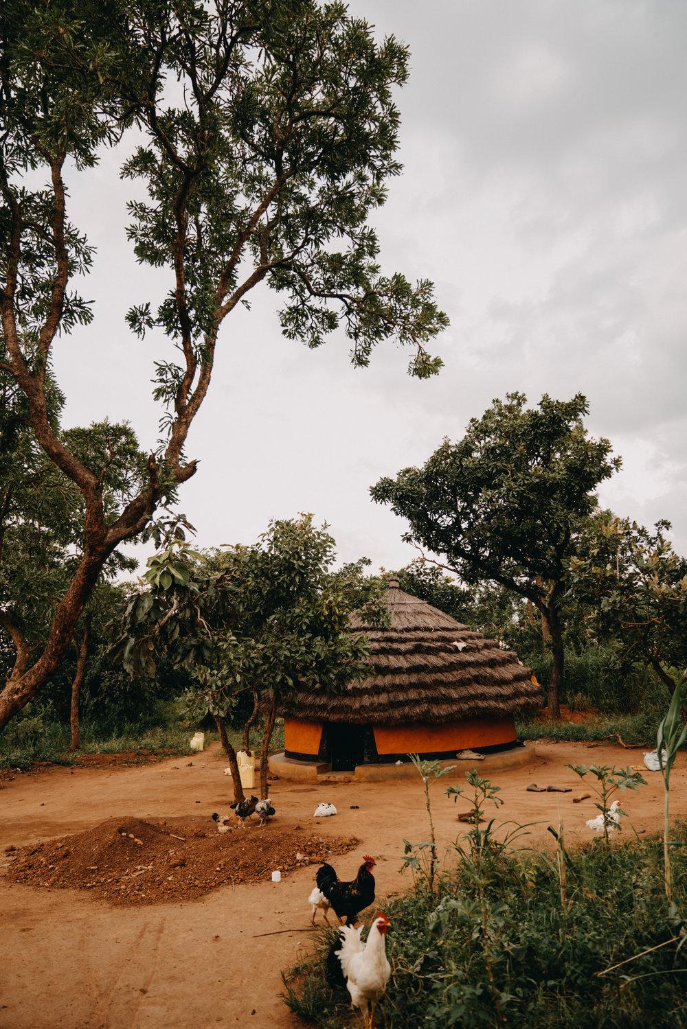 uganda july 2018-4.jpg