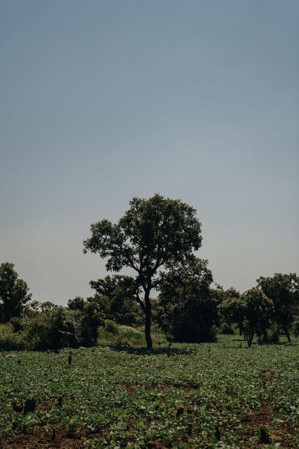 uganda july 2018-33.jpg