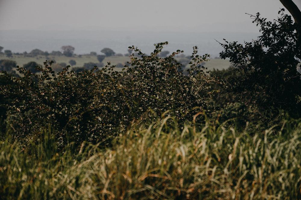 uganda july 2018-226.jpg