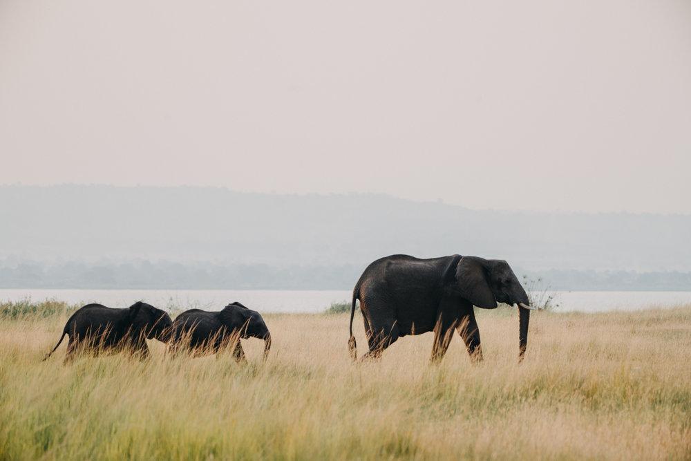 uganda july 2018-293.jpg