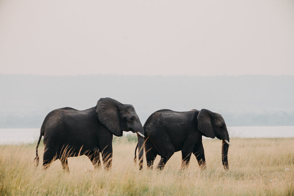 uganda july 2018-294.jpg