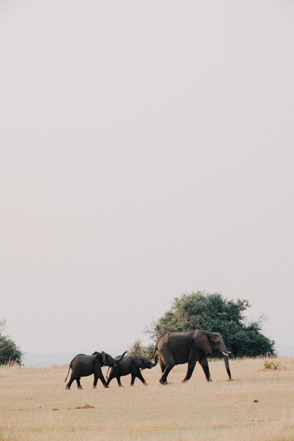 uganda july 2018-296.jpg
