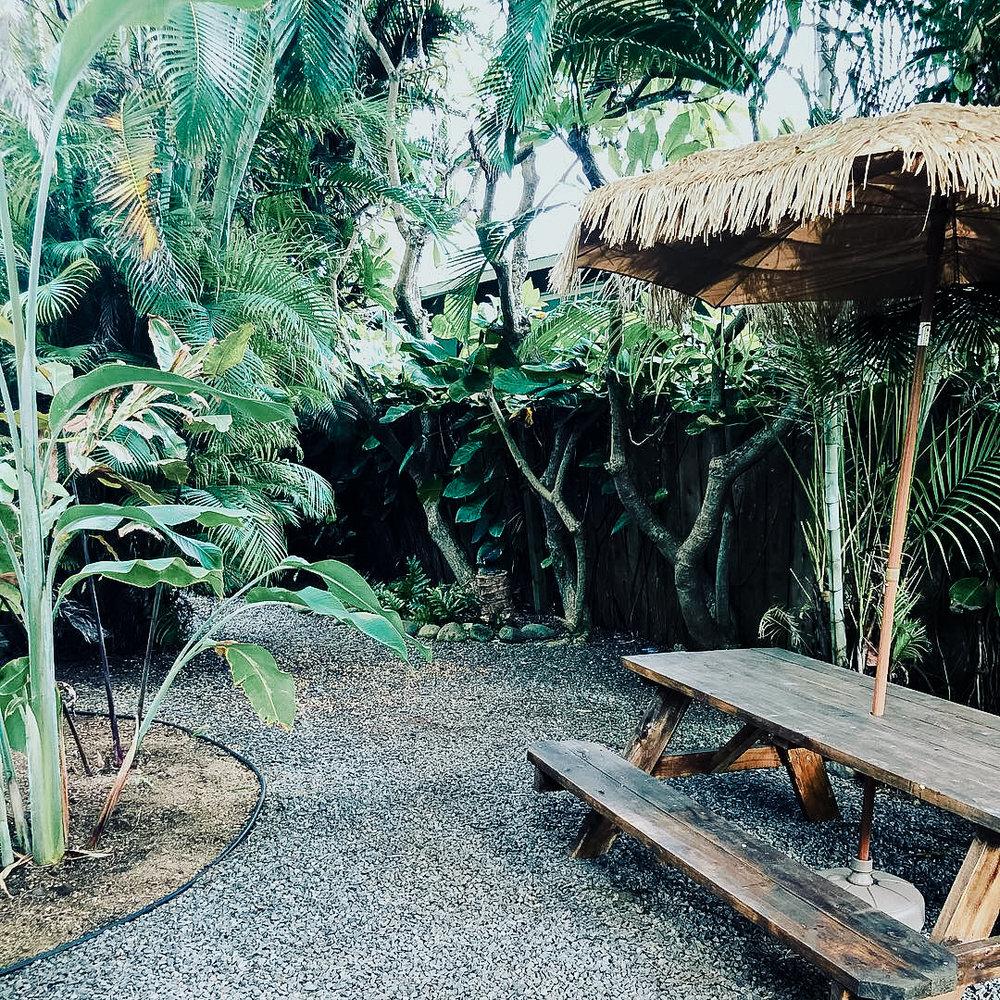 meagans hawaii pics-12.jpg