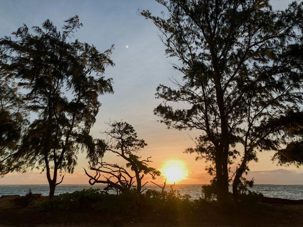 meagans hawaii pics-18.jpg