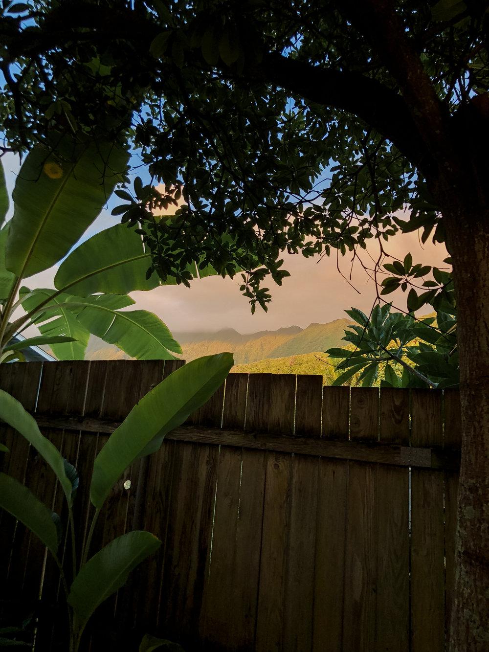 meagans hawaii pics-19.jpg