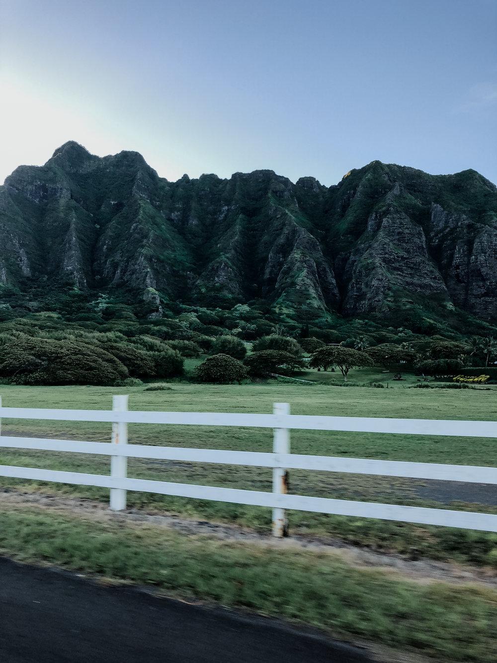 meagans hawaii pics-43.jpg