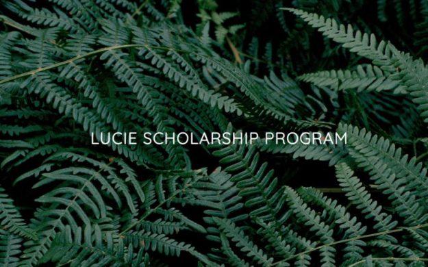 Lucie Foundation Program