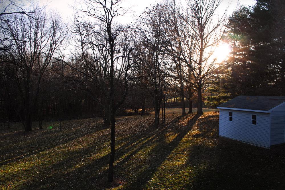 country field sunset.jpg