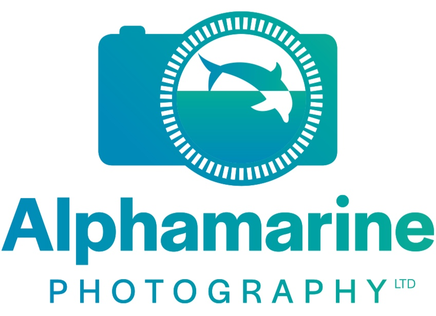 Alphamarine = Accessible Underwater Photography