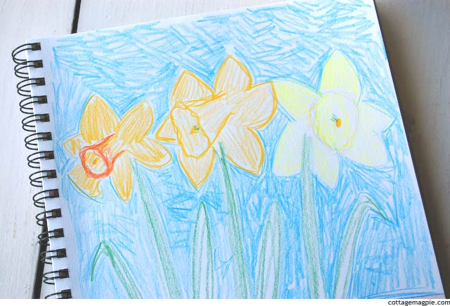 Daffodils and Drawings via Cottage Magpie