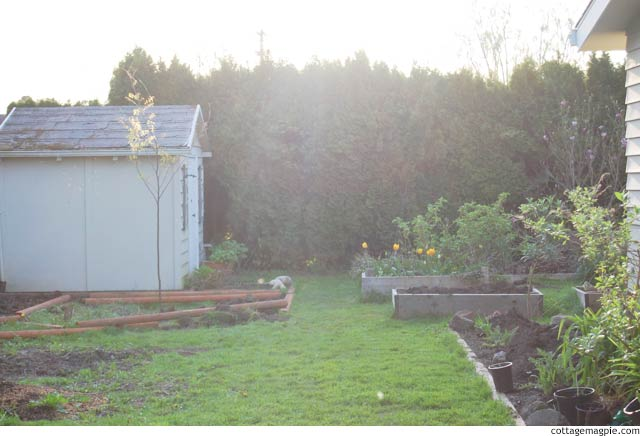 Beginning the Shed Garden Layout via cottagemagpie.com