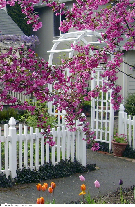 Selecting An Entry Arbor