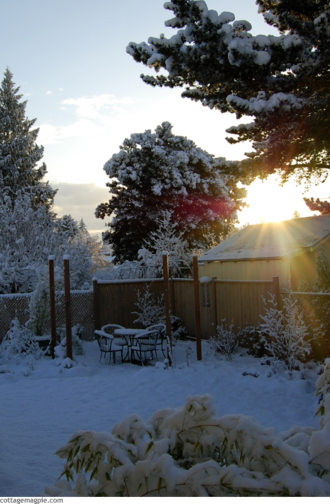 Sunrise Over Snowy Arbor