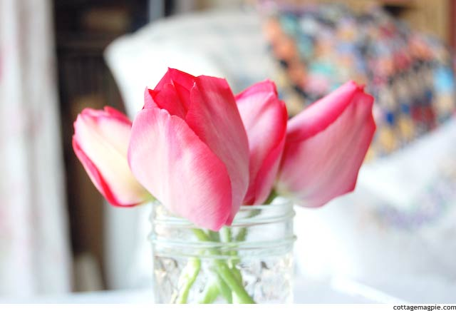 Tulips from Baby Girl via Cottage Magpie