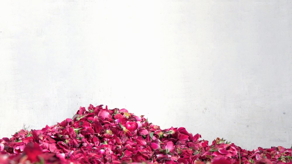 THIS IS NOT YOUR GRANDMA'S ROSEWATER   OUR NATURAL  FLORAL SCENT IS LIGHT AND  DIFFUSES QUICKLY   THERE'S NOTHING ELSE LIKE IT   TRY ONE TODAY
