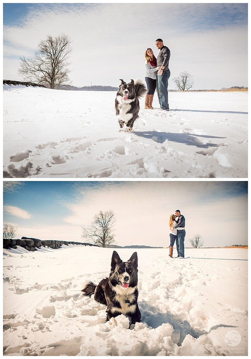 Gina Natale and Paul Worrilow Engagement at Brandywine Creek State Park with their dog
