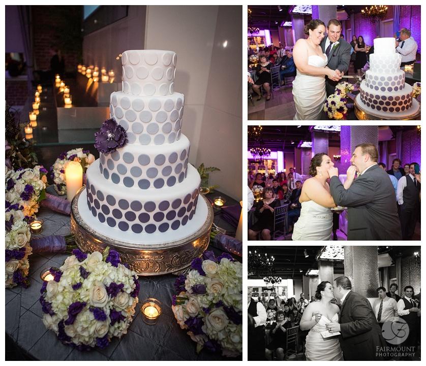 Nothstein Wedding cake cutting