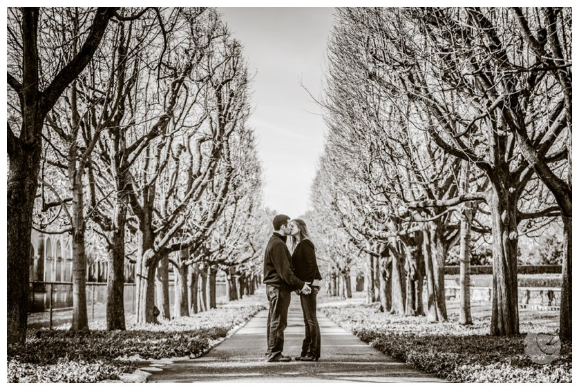 Black and white engagement portrait of couple between rows of trees near Philadelphia, PA