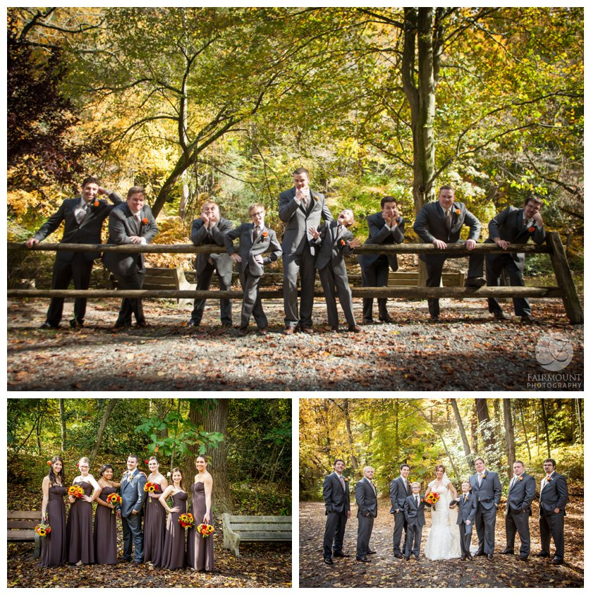 dramatic groomsmen on fence, groom with bridesmaids and bride with groomsmen