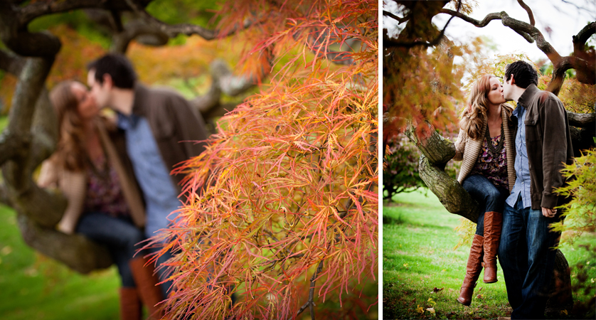 Couple sitting in Japanese Maple Tree with bright orange leaves