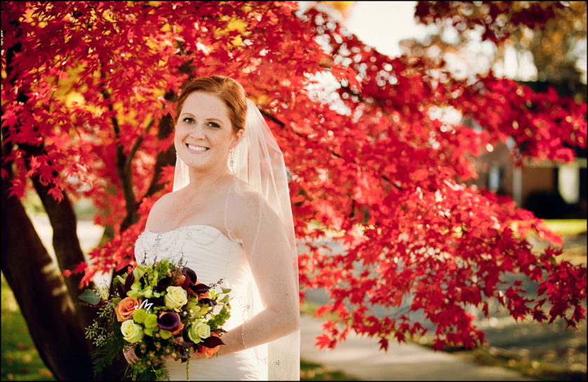 fall wedding portrait with beautiful Japanese Maple tree