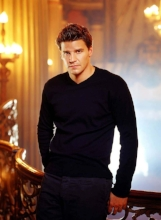 """Thanks for the love and simplicity of our talks."" – David Boreanaz -"
