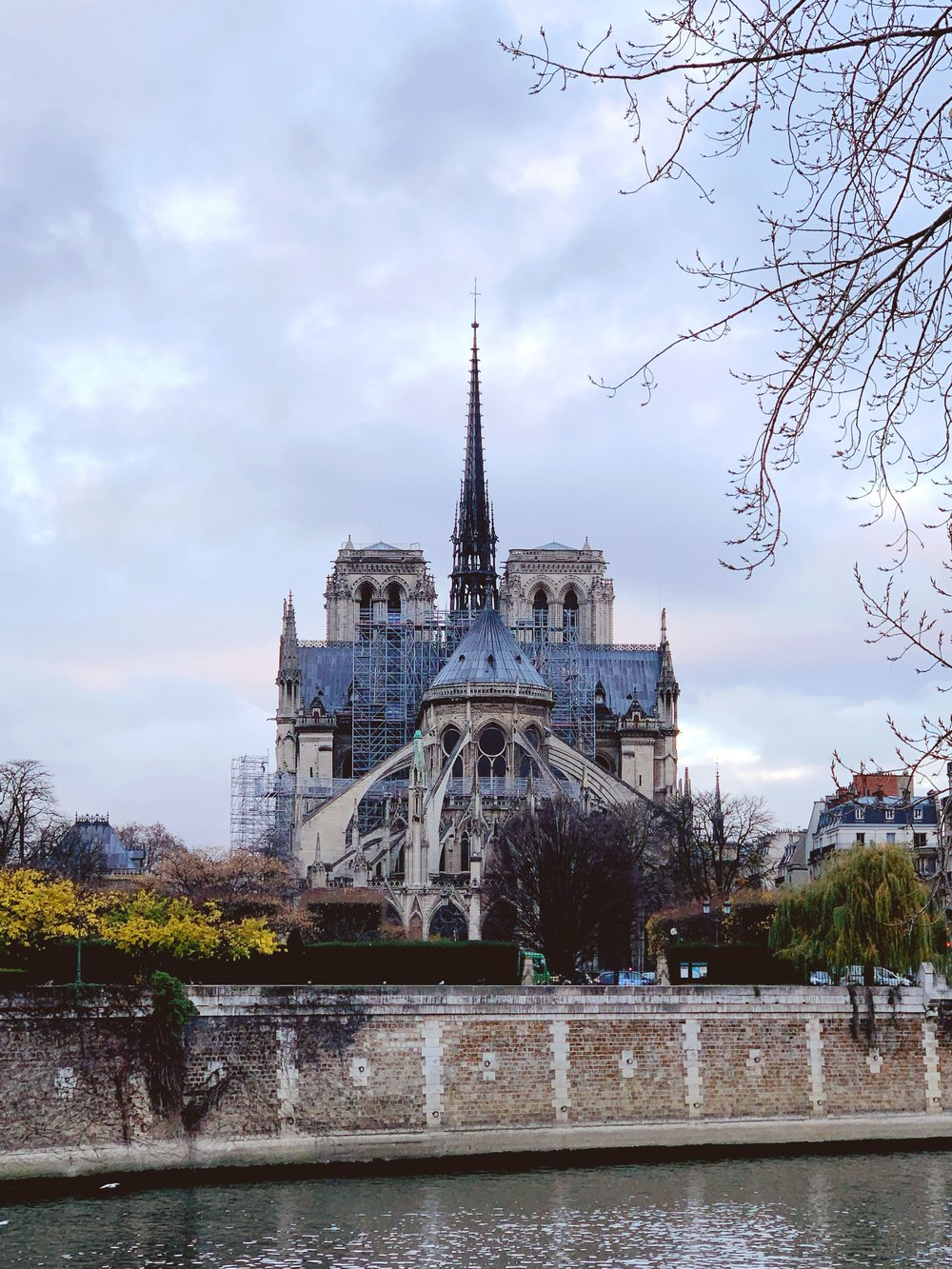 whitespace_and_wellness_Paris_Itinerary_Notre_Dame