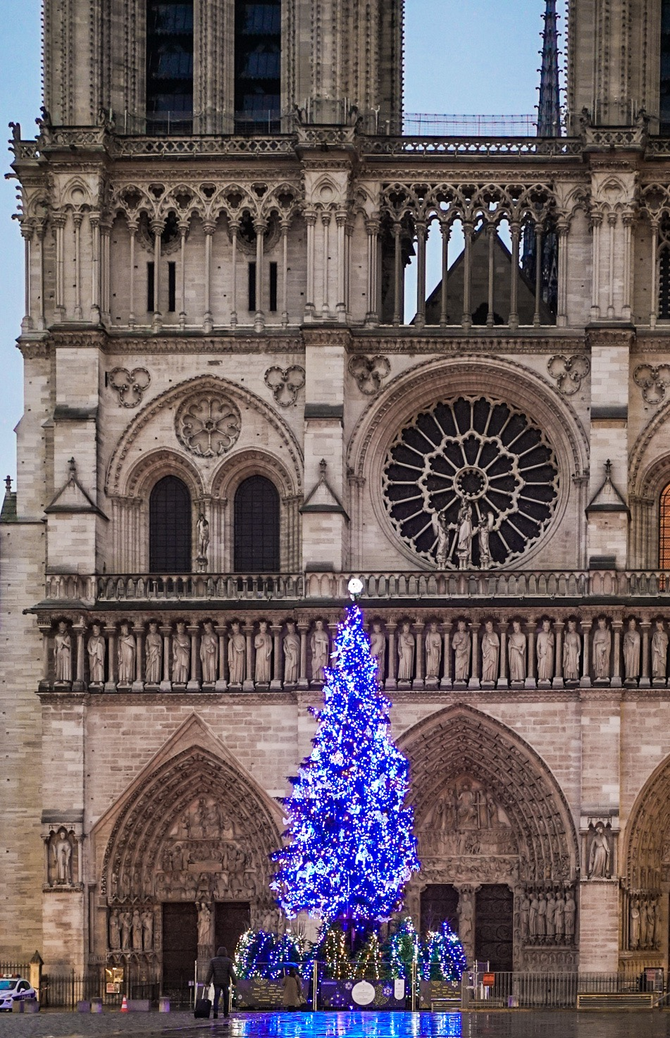 whitespace_and_wellness_ Notre_Dame