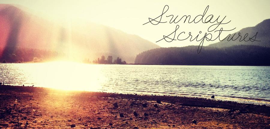 sunday-scripture-11.4.12.jpg