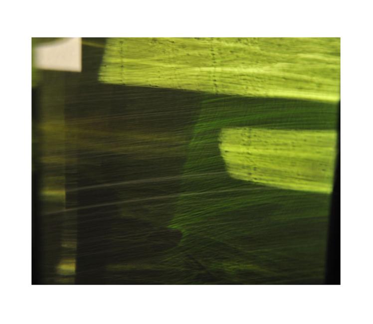 Steven-Silverstein-Fine-Art-Green-Veil-4-8982.jpg