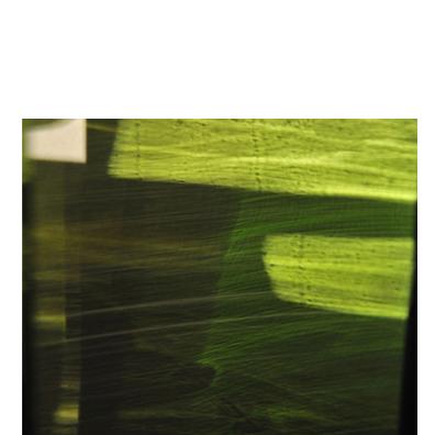 "Green Veil 24"" x 30"" Edition of 5"