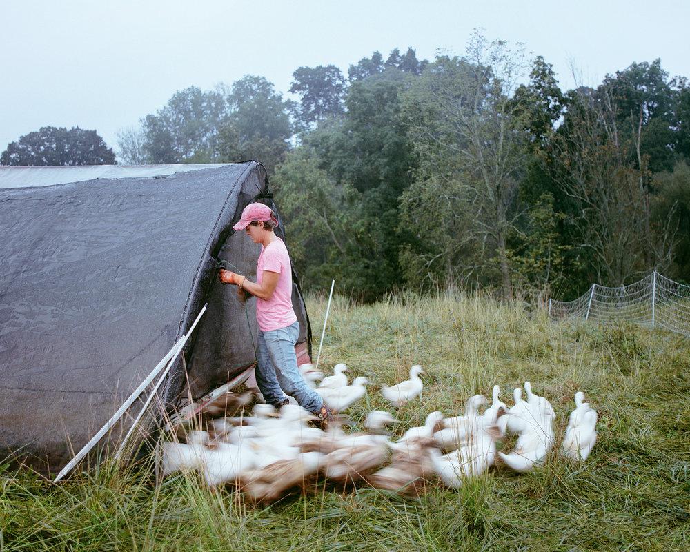 Sally Feeding the Ducks