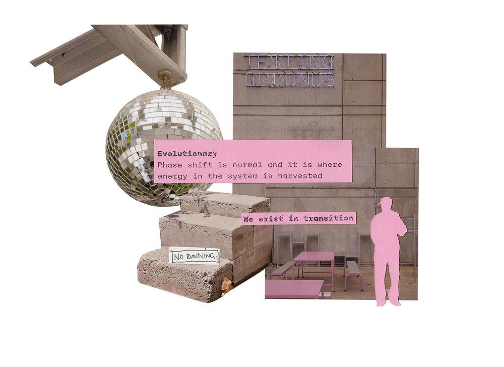 TG3-collage-05.jpg