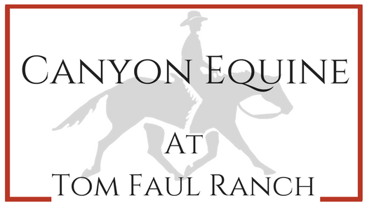 Canyon Equine