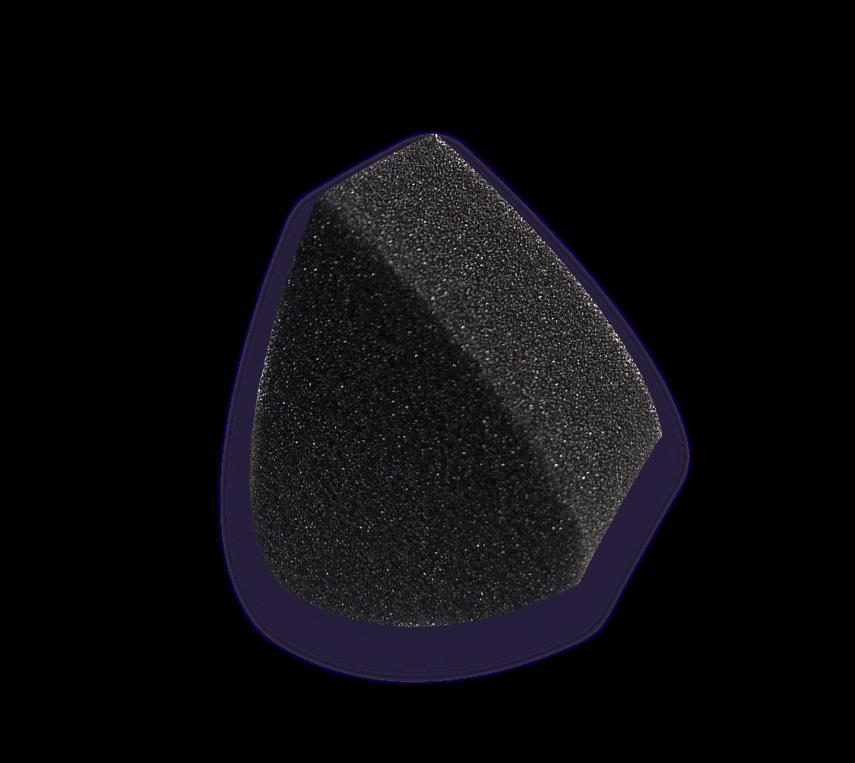 Black_petal_sponge