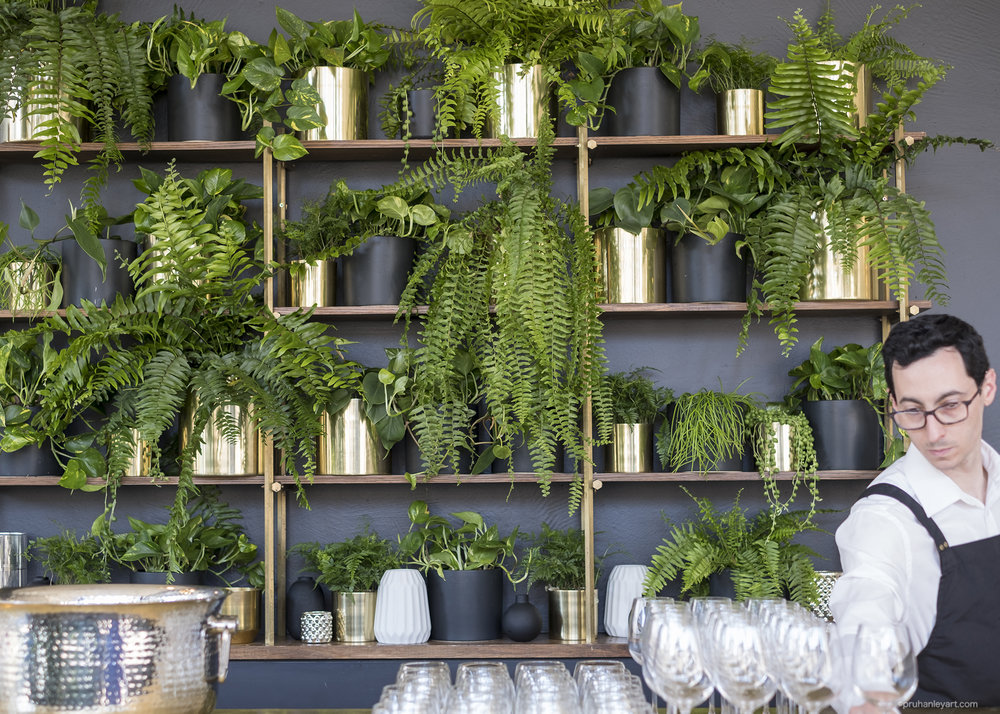 Green wall for Alto events Melbourne