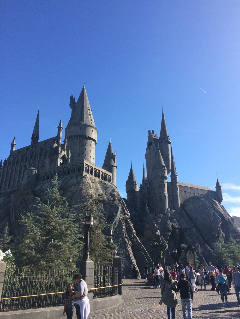 Hogwarts School of Witchcraft and Wizadry