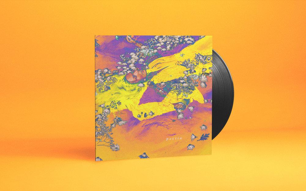 album-pectin