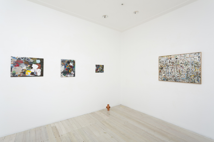 JAKE WALKER  PAINTING QUESTIONS  17 JULY – 10 AUG 2013