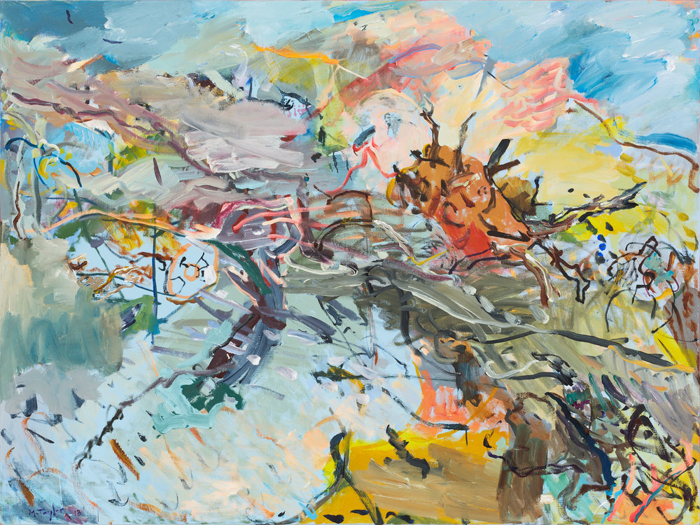 MICHAEL TAYLOR  Brushwood  2013 oil and oil stick on linen 120 × 160 cm