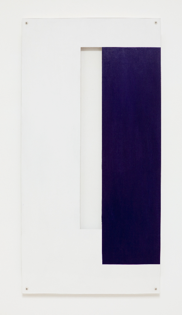 SIMON BLAU   Middle Section  2011 gesso and perspex over plywood 1210 × 600 cm
